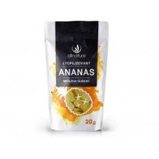 Ananas sušený mrazem kousky 20g